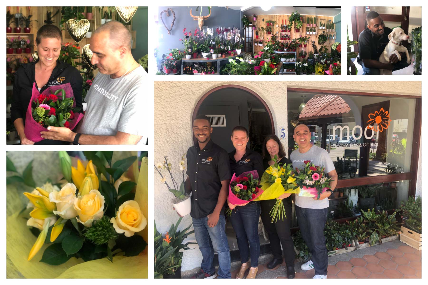 Mooi Flowers, Plants & Giftstore
